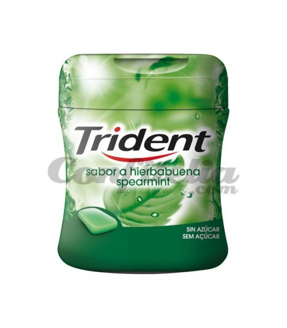Trident Mini Box spearmint gum