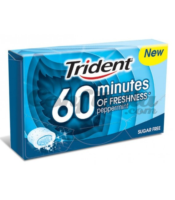 Trident 60 Minutes peppermint gum